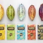 Thiết kế bao bì thương hiệu Marou Chocolate