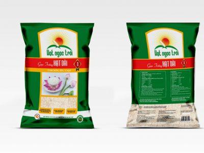 Thiết kế bao bì nhãn mác gạo Hạt Ngọc Trời