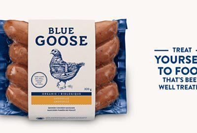 Mẫu thiết kế bao bì thực phẩm sạch Blue Goose