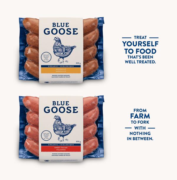 thiet-ke-bao-bi-thuc-pham-sach-blue-goose (9)
